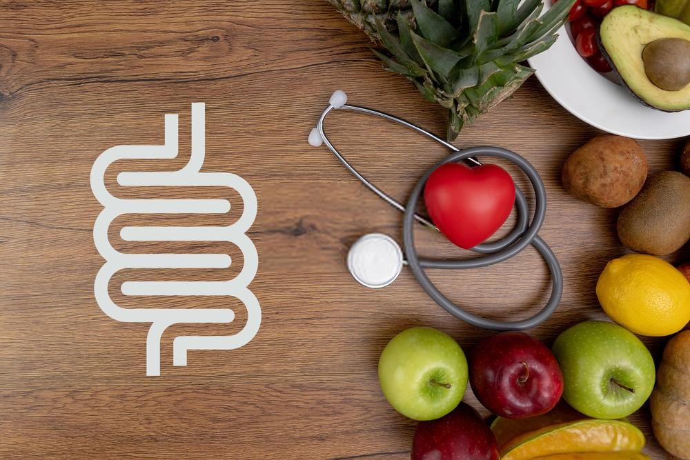 Melhores alimentos Probióticos para sua saúde