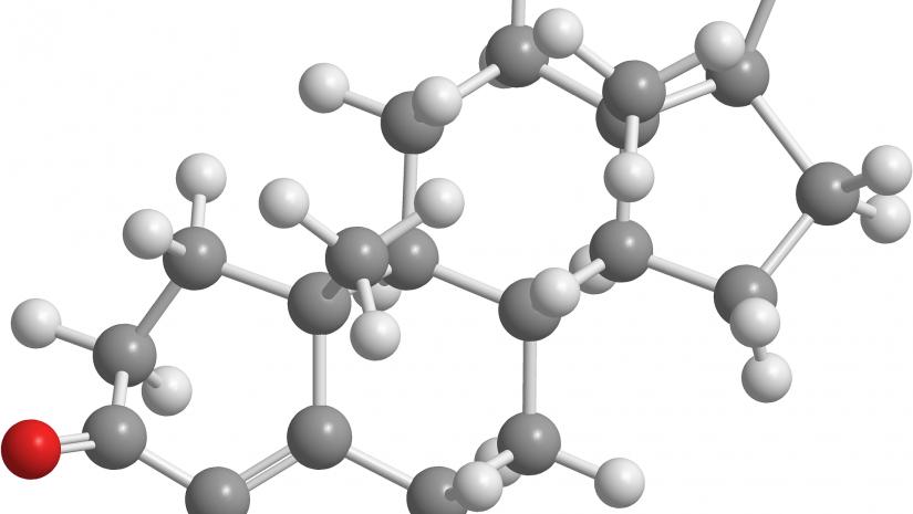 Progesterona natural: como ingerir?