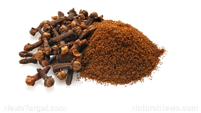 Cravo-da-índia- Descubra sua Origem, benefícios, nutrientes e usos.