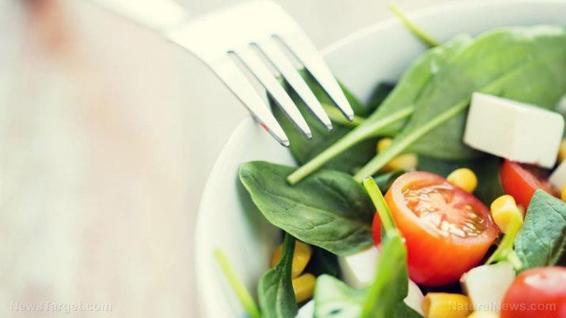 Dieta vegetariana — fontes, benefícios para a saúde