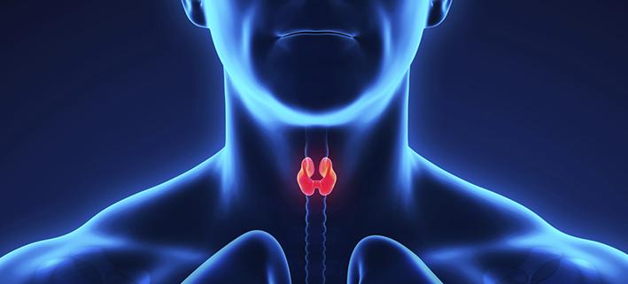 Disfonia espasmódica – causas, sintomas e tratamentos