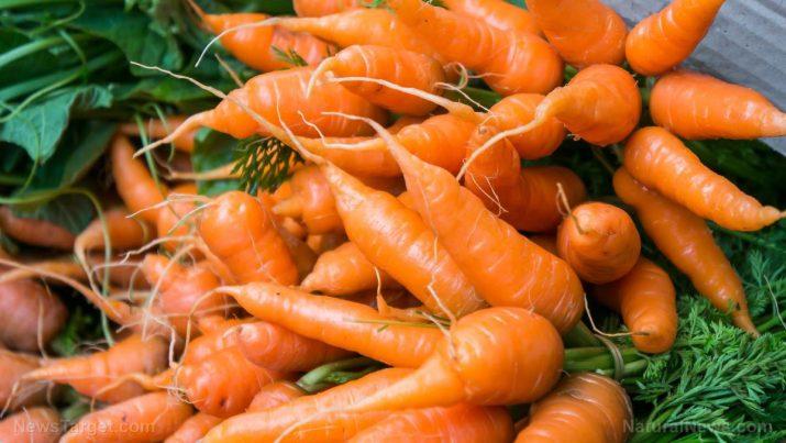 Beta-caroteno: fontes e benefícios para a saúde e usos