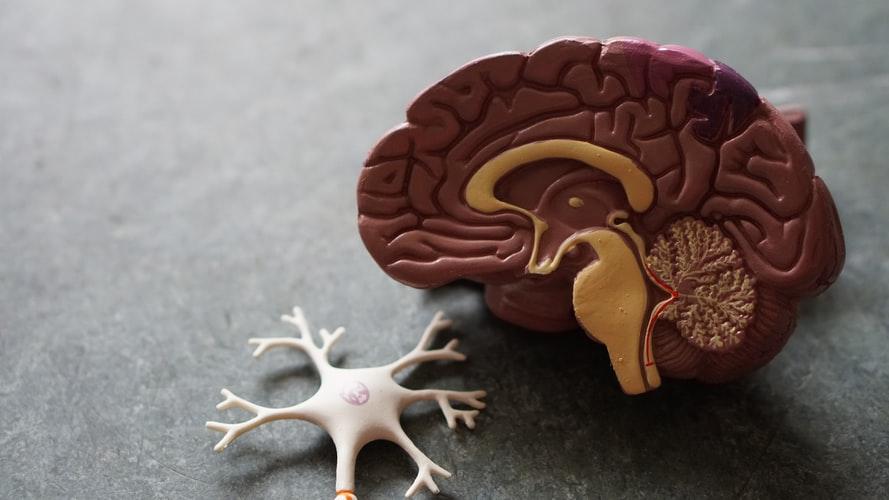 Doenças neurodegenerativas: uma etiologia comum e uma terapia comum