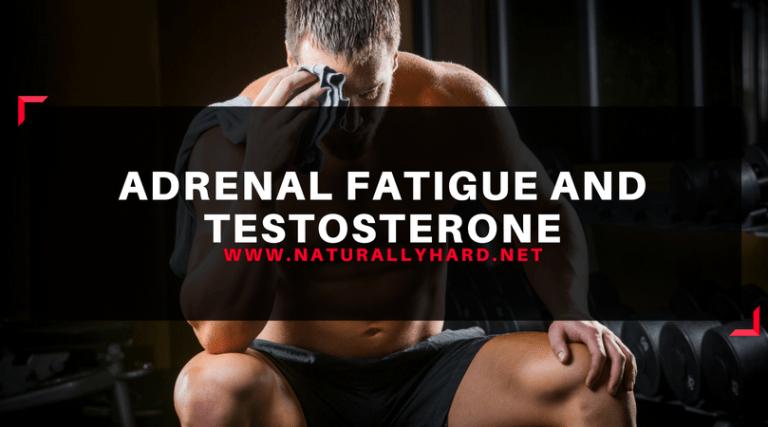 Fadiga adrenal e testosterona