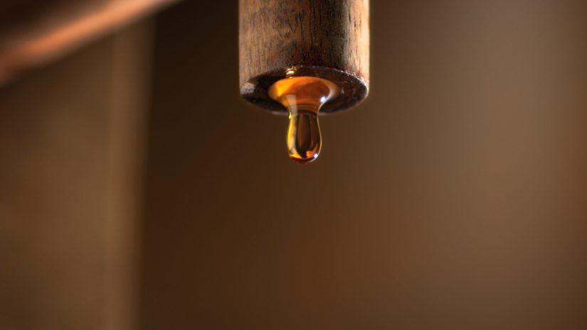 Garum – A história do óleo de fígado de bacalhau fermentado