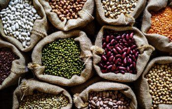 A Vitamina B17 é encontrada em grãos