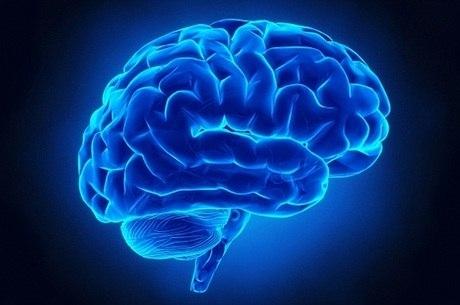 Autofagia cerebral: curando o cérebro intoxicado