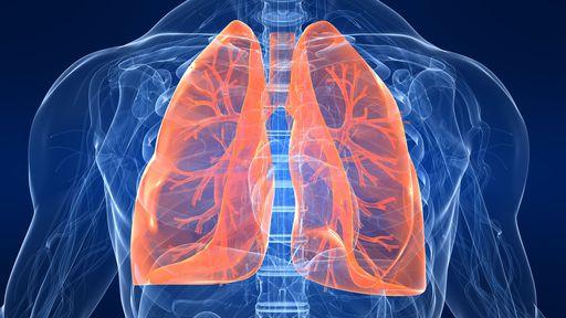 Como desintoxicar os pulmões?