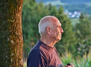 PQQ ajuda a apoiar a função cerebral e envelhecimento saudável
