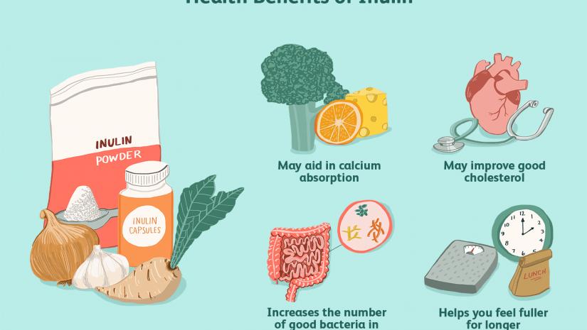 Os benefícios da inulina para a saúde